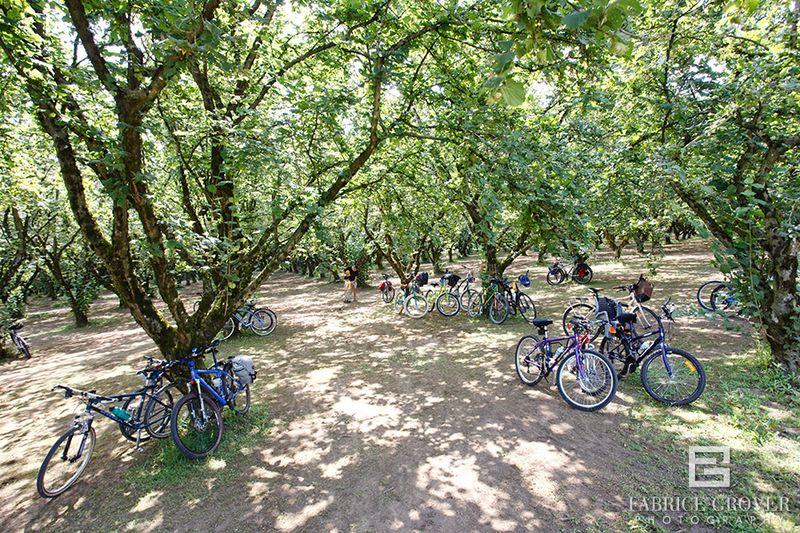 SlowFoodVancouver_CycleTour_2