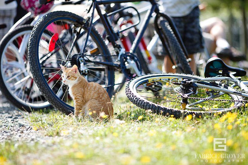 SlowFoodVancouver_CycleTour_4