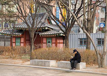 Seoulkoreaparksitting